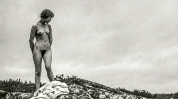 Man och kvinnor som har sex nakna